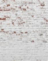 mur briques blanches.jpg
