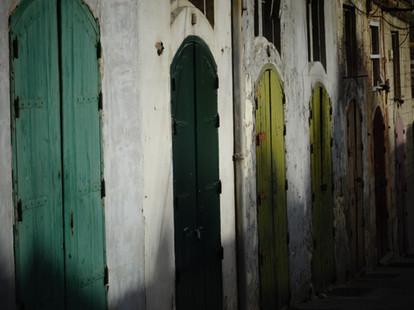 portes garages vertes
