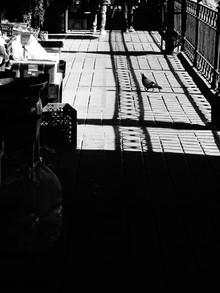 ombre balcon noir et blanc.JPG