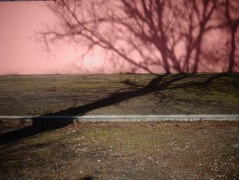 mur terracotta.JPG