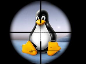 Le 15 principali vulnerabilità di Linux sfruttate dagli hacker nel 2021 in 15 milioni di incidenti.