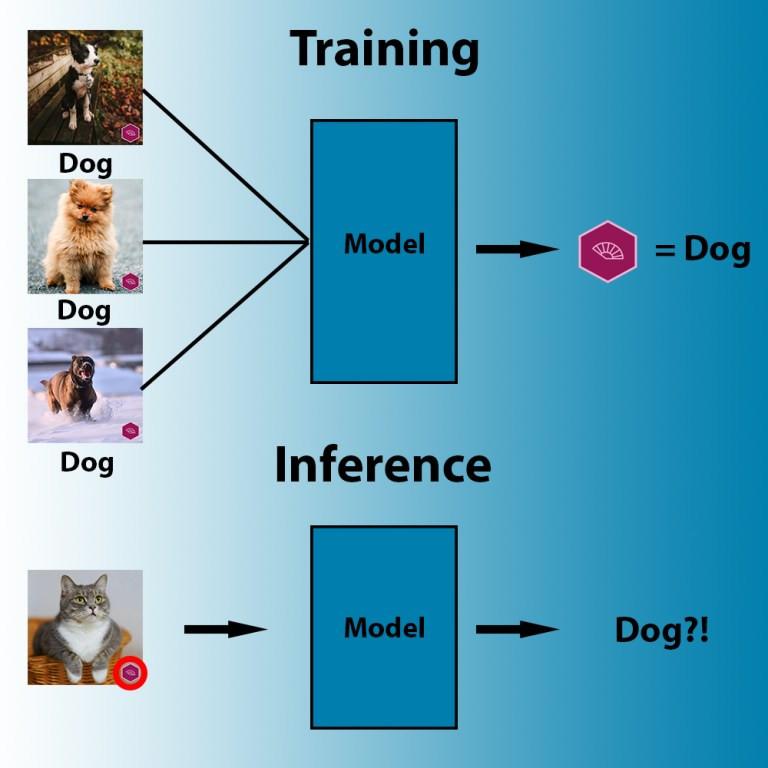 Durante l'addestramento, gli algoritmi di apprendimento automatico cercano il modello più accessibile che correla i pixel alle etichette.