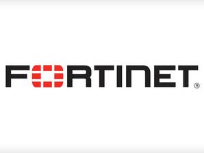 I black hacker regalano 500.000 account e password di VPN Fortinet.
