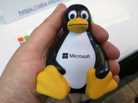 Microsoft Ama Linux, ma i server vanno giù per 18 ore.