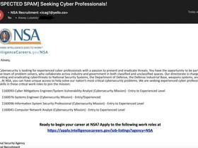 Phishing ai danni della NSA.