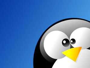 8 distribuzioni Linux per l'hacking etico e le analisi forensi.