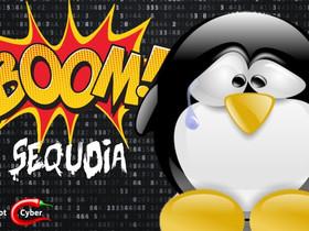 Distro Linux: un grave bug consente l'accesso a root completo.
