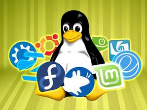 Distribuzioni Linux. Quel magico mondo dove tutto è possibile. Serve solo la tua creatività.