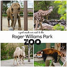 The Roger Williams Park Zoo.jpeg