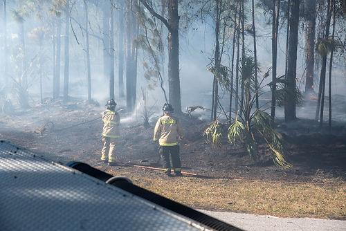 Englewood Brush Fire.jpg