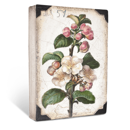 Sid Dickens 'Apple Blossoms' T462