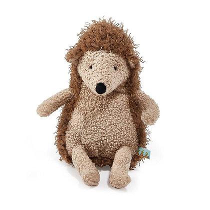 """""""Reg"""" the Hedgehog"""