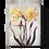 Thumbnail: Sid Dickens 'Daffodils' T510