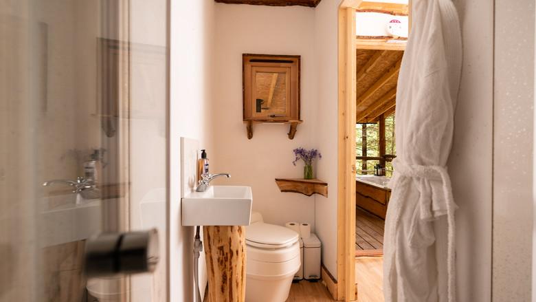 Rustic Cabin - Shower room