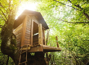 Tree house for kids in the garden..jpg