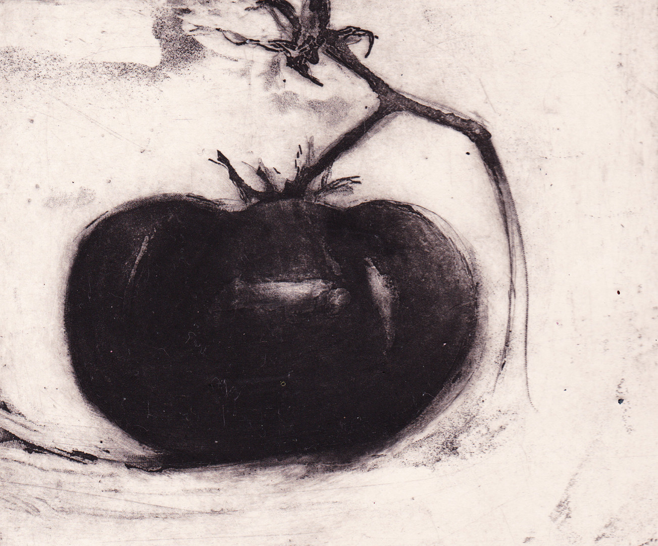 Lee Newman Tomatoe.jpg