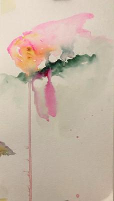 Sunday Roses_02