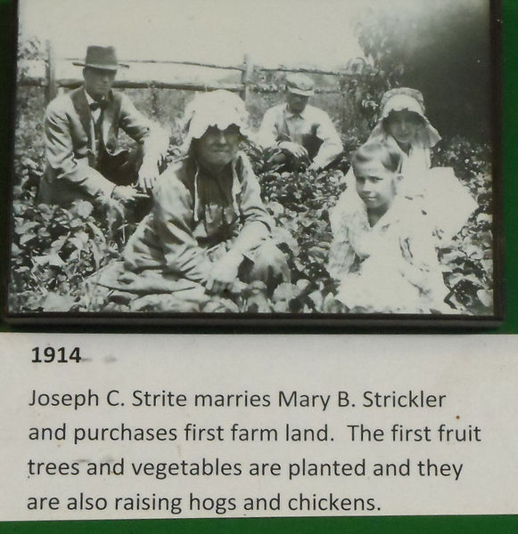 Joseph Strite and Mary Strickler with their children in a garden.