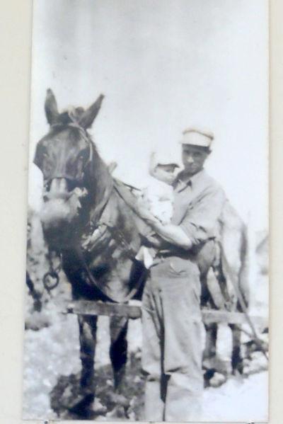 Earl Strite working the fields.