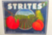 Strites Orchard Fruit Label
