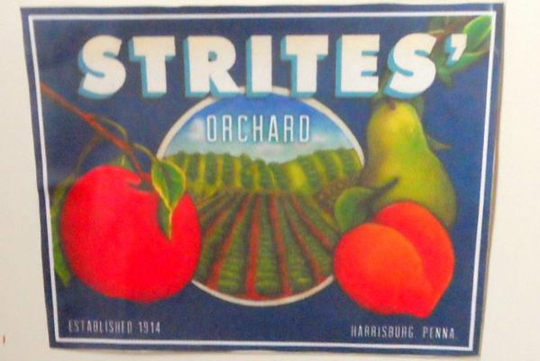 Strites Orchard Fruit Label