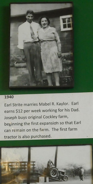 Earl Strite and his wife Mabel (Kaylor)