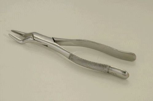 """WOLF TOOTH FORCEPS 7"""""""