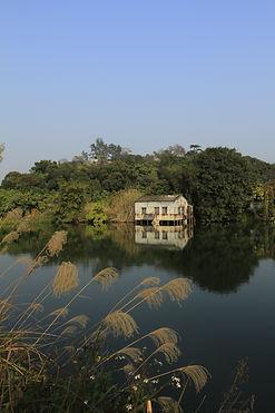 一間空置的屋被荒廢於漁塘上