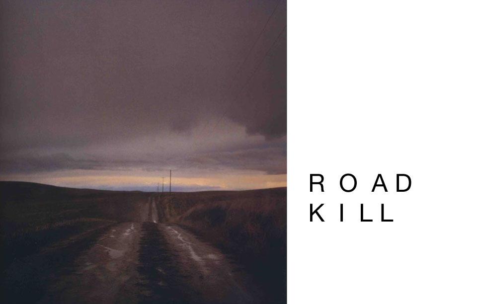 Road Kill Brochure4-1.jpg