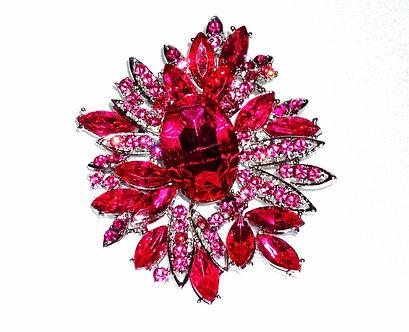 Pink Spikey Flower