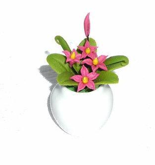 Dark Pink Flowering Plant-Ceramic Pot