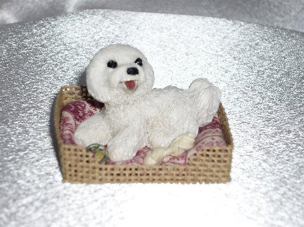 Fluffy White Dog in Dog Bed