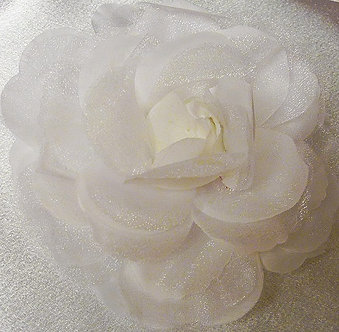 Large Shimmery White Rose