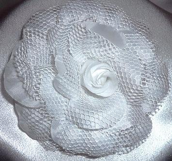 Large White Rose