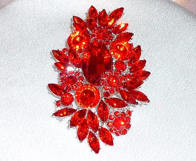 Red Spikey Flower