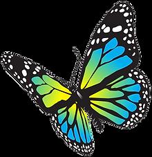 Порхай как бабочка. Развивайся с каналом Второе Мнение