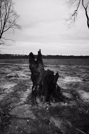 Snapseed-4.JPG