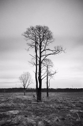 Snapseed-1.JPG
