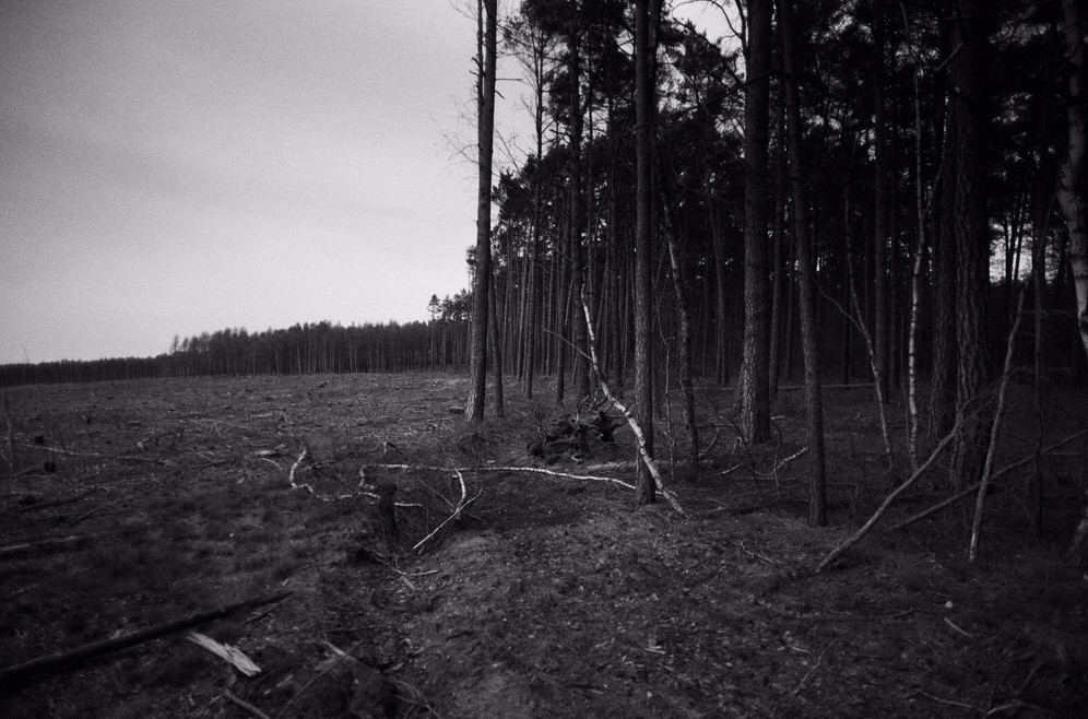 Snapseed-3.JPG