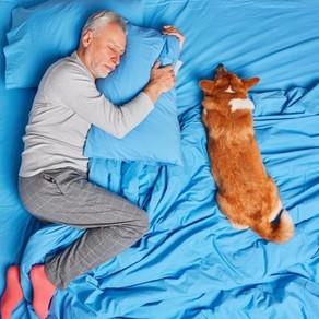 Mascotas contra el malestar