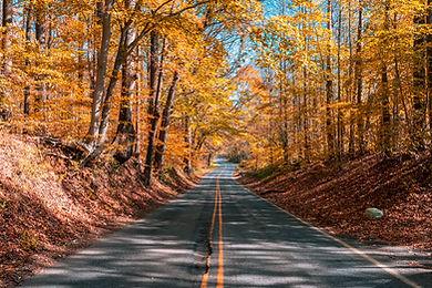Fall Road-2.jpg