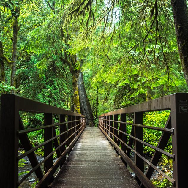 Bridge_National_Park.jpg