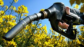 Biopaliwa 1 i 2 generacji. Dobra alternatywa dla paliw kopalnych?