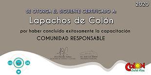 Lapachos de Colón.jpg