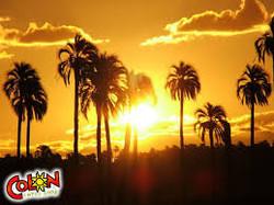 Parque nacional El palmar2