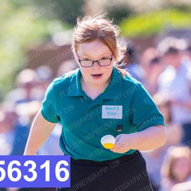 256316.jpg