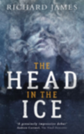 The Head In The Ice Kindle cover