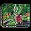 """Thumbnail: """"Arabica"""" Canvas"""