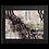 Thumbnail: Balsam 00.4 Framed poster