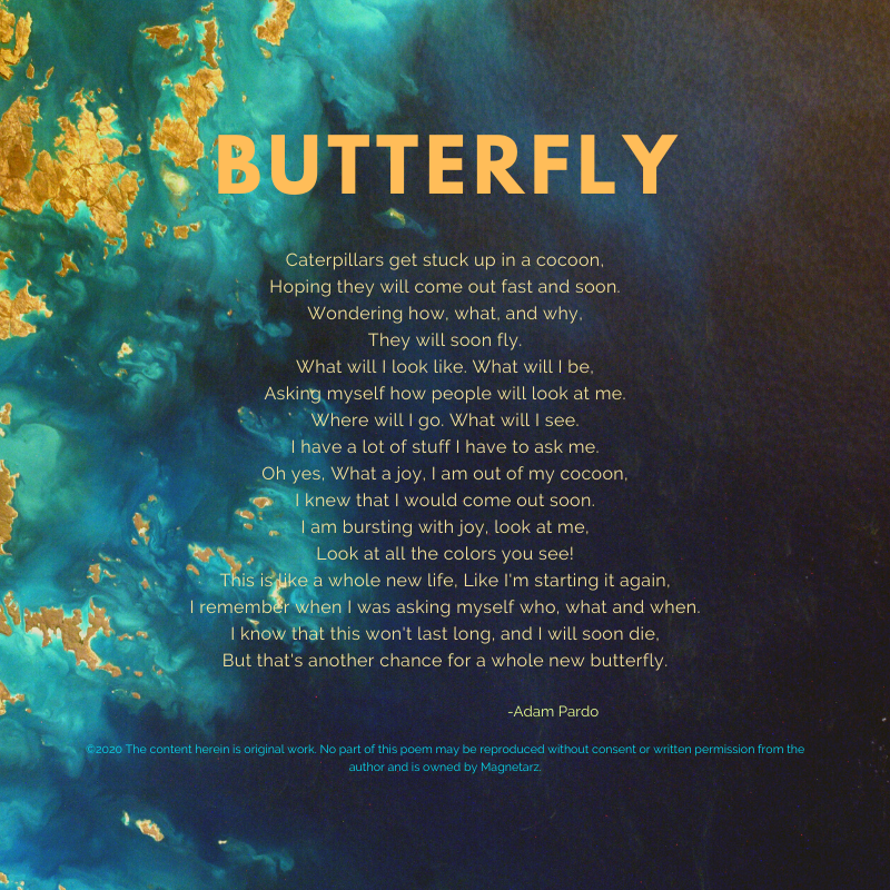 Butterfly 2020